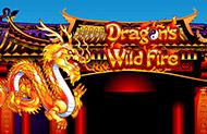 Играть в автомат Dragon's Wild Fire от казино Гаминаторслотс картинка логотип