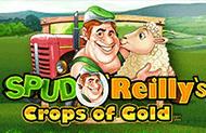 Автомат Spud O' Reilly's Crops of Gold от казино Gaminatorslots картинка логотип